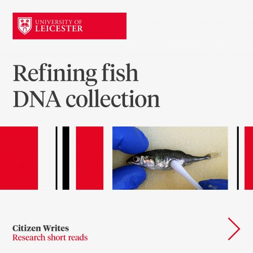 Refining fish DNA collection image